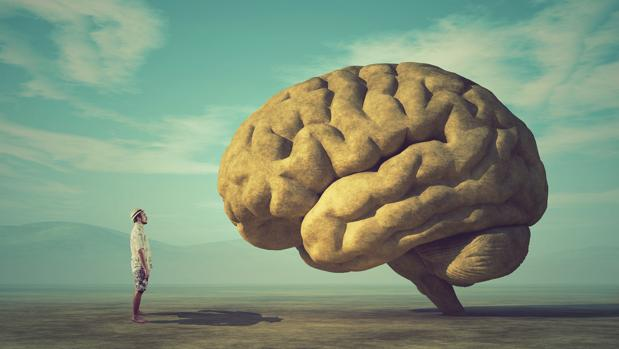 10 curiosidades que desconocías sobre tu cerebro